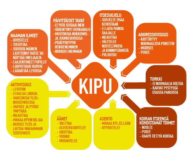 Kipu_kehä-01